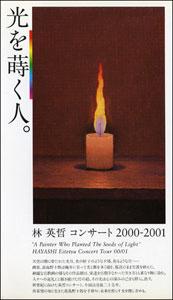 v_hikari300